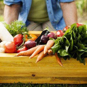 reasons to eat vegetables with every meal
